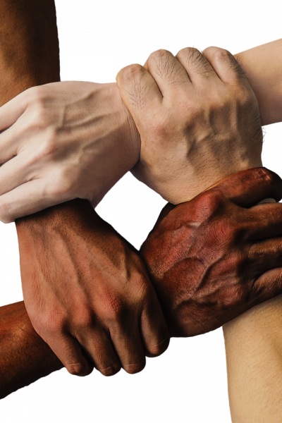 hands of variou skin colors